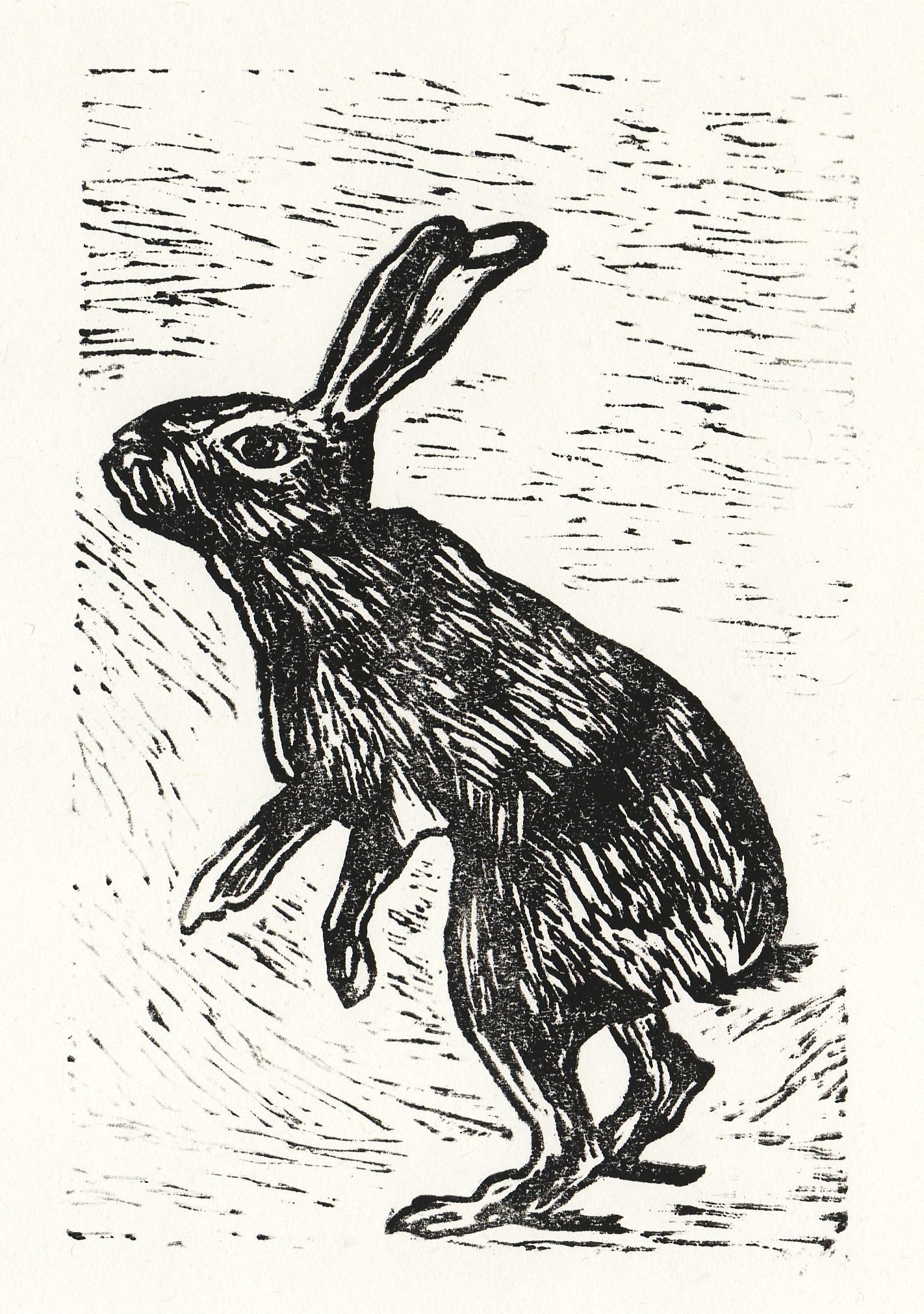 Lino Hare